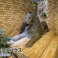 ライオン_補正 のコピー